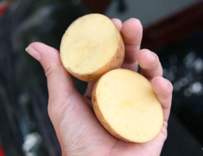 Những lát khoai tây cũng giúp ích rất lớn trong việc làm sạch cửa